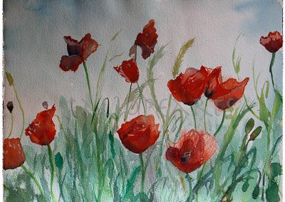 Once amapolas (30x40)